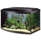 CAYMAN akvariumai