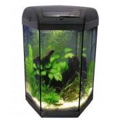 Šešiakampiai HEXASET akvariumai