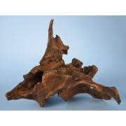 Šaka Mangrove 15x10x12 cm
