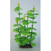Deluxe-Pflanze, 25-32 cm