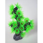 Spalvotas koralas (žalias), 10x6x12 cm