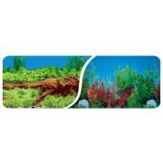 Dvipusis akvariumo fonas 30cm