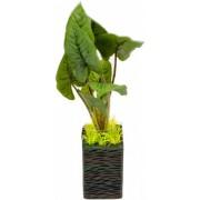 Dirbtinis augalas (su vazonėliu), 25 cm