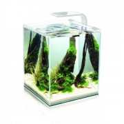 Akvariumas krevetėms SHRIMP SET SMART 2, 19 l (baltas)