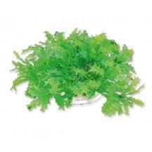 Dirbtinis augalas 10cm
