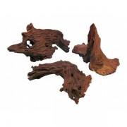 Natūrali šaka Mangroven Wurzel, 40-60 cm
