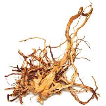 Natūrali šaka Finger wood XL 50-60cm